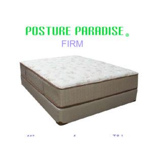 Posture Paradise Queen Mattress Set
