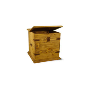 Cheyenne Trunk End Table-Natural